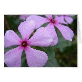 Five Purple Petals Greeting Card