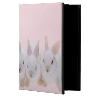 Five Rabbits 2 iPad Air Cases