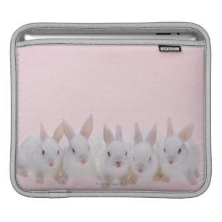 Five Rabbits 2 iPad Sleeve