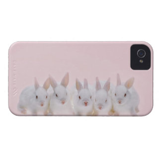 Five Rabbits 2 iPhone 4 Case-Mate Case