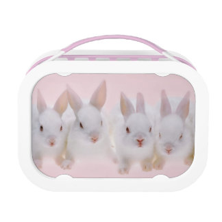 Five Rabbits 2 Lunch Boxes