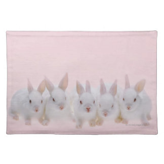 Five Rabbits 2 Placemat