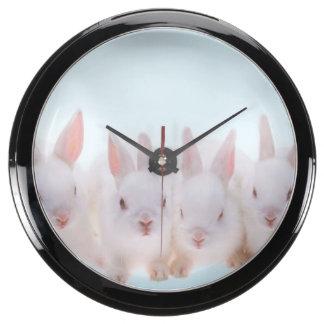 Five Rabbits Fish Tank Clocks