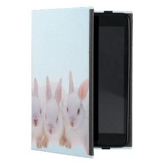 Five Rabbits Covers For iPad Mini