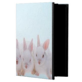Five Rabbits iPad Air Covers