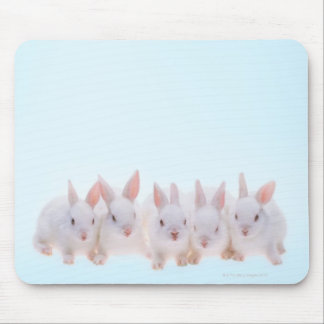 Five Rabbits Mouse Mat
