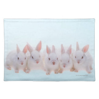 Five Rabbits Placemat