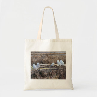 Five Snowy Owls Picture Canvas Bags