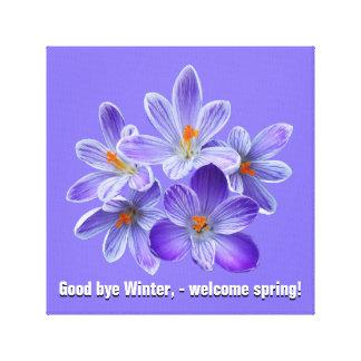 Five violet crocuses 05.0, spring greetings canvas print