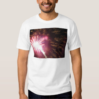Fizzle and Flash Tee Shirt