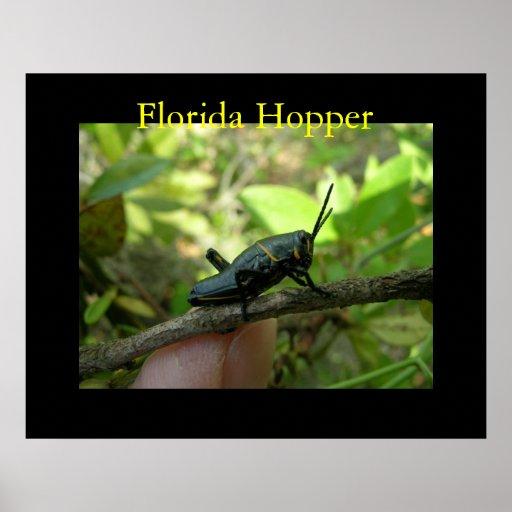 FL Hopper Poster