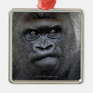 Flachlandgorilla, Gorilla gorilla, Silver-Colored Square Decoration