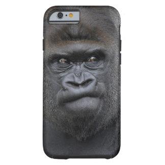 Flachlandgorilla, Gorilla gorilla, Tough iPhone 6 Case