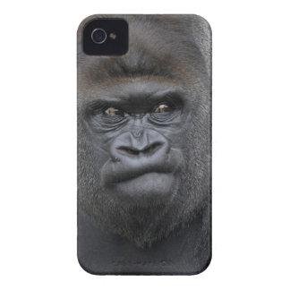 Flachlandgorilla, Gorilla iPhone 4 Case-Mate Case