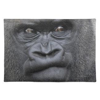 Flachlandgorilla, Gorilla Placemat