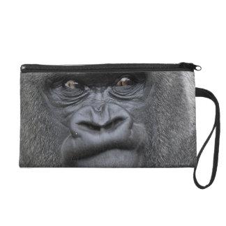 Flachlandgorilla, Gorilla Wristlet