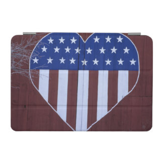 Flag in heart shape painted on barn after 9-11. iPad mini cover