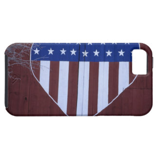 Flag in heart shape painted on barn after 9-11. iPhone 5 cover