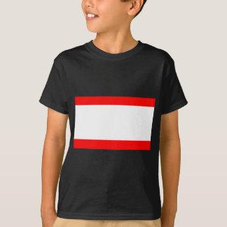 Flag of Antwerp T-Shirt