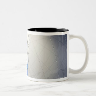 Flag of Argentina Two-Tone Coffee Mug