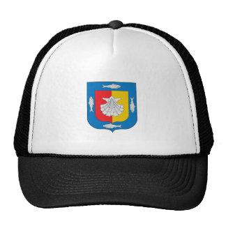 Flag of Baja California Sur Trucker Hats