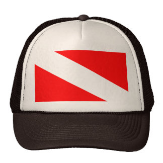 Flag of Barotseland Cap