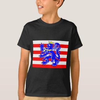 Flag of Bruges T-Shirt