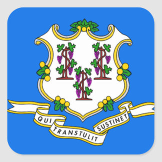 Flag of Connecticut Square Stickers
