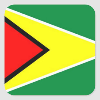Flag of Guyana Square Sticker