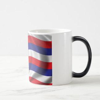 Flag of Hawaii Coffee Mug