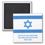 Flag of Israel, Refrigerator Magnets