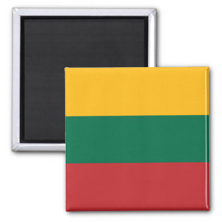 Flag of Lithuania  Magnet