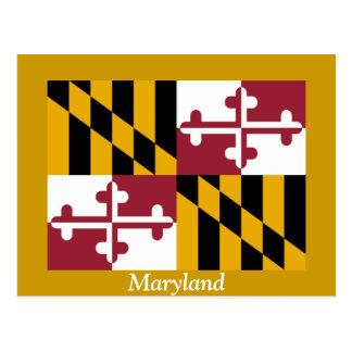 Flag of Maryland Postcard