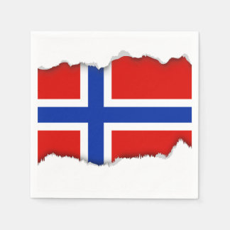 Flag of Norway Paper Napkins