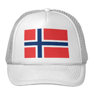 Flag of Norway Tshirts, Mugs, Buttons Trucker Hat