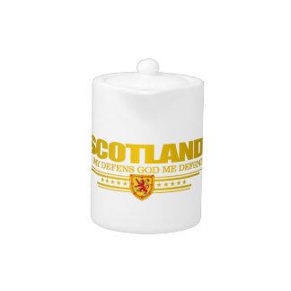 Flag of Scotland 2