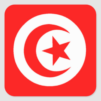 Flag of Tunisia Square Sticker