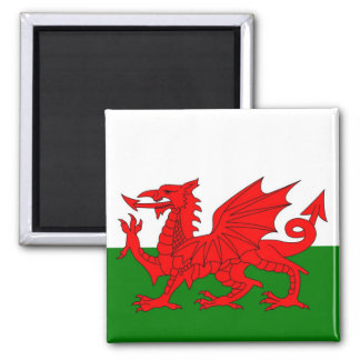 Flag of Wales Magnet