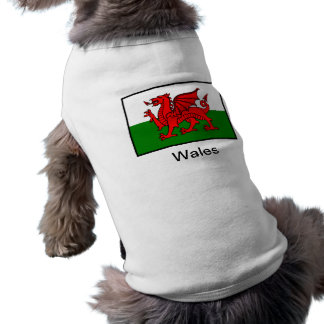 Flag of Wales Shirt