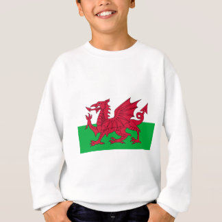 Flag of Wales - The Red Dragon - Baner Cymru Sweatshirt