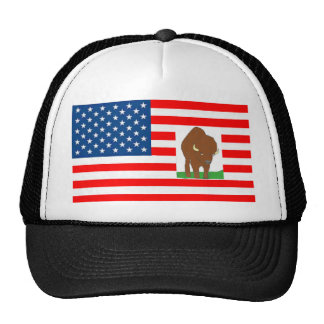 FLAG the USA BISON 1.PNG Trucker Hats