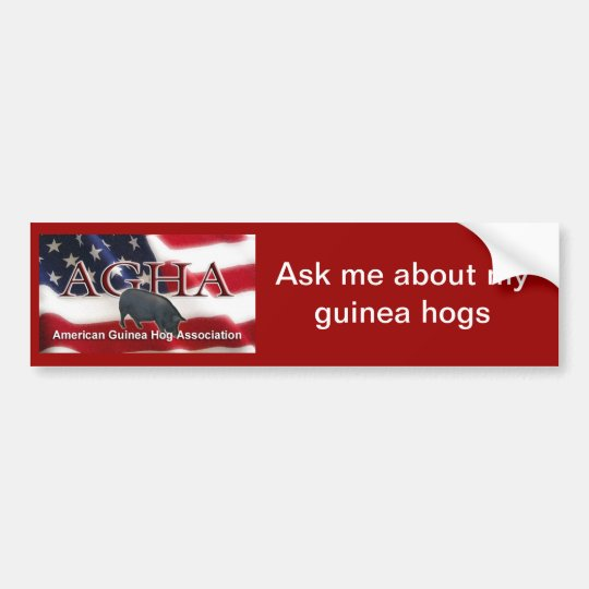 FlagBumperSticker Bumper Sticker