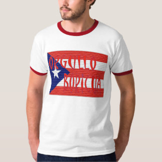 Flags in bricks T-Shirt