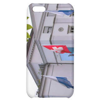 Flags out at the theatre iPhone 5C cases