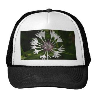 Flamboyant Flower Cap
