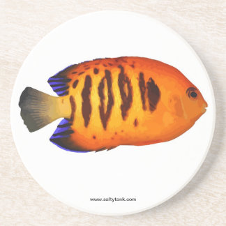 Flame Angel Fish Coaster