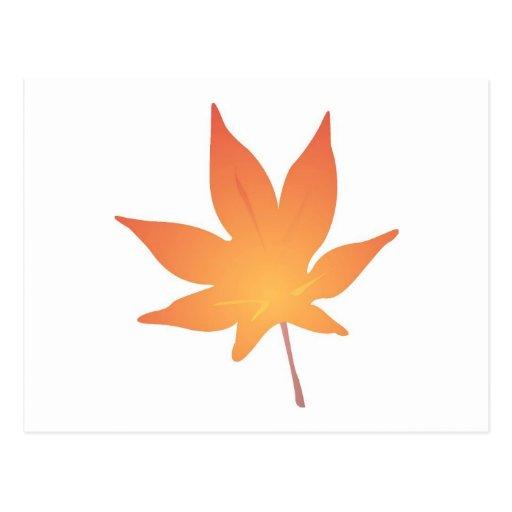Flame Orange Leaf Postcards