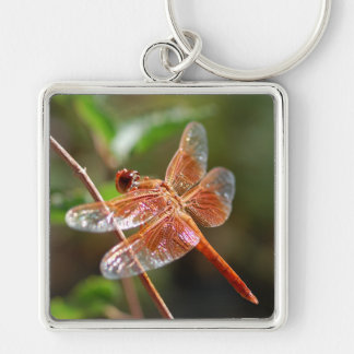 Flame Skimmer Dragonfly Silver-Colored Square Key Ring