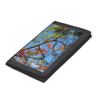Flame Tree Tri-fold Wallets