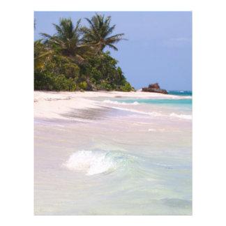 Flamenco Beach Culebra Puerto Rico Full Color Flyer